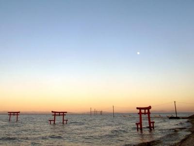大魚神社海中鳥居