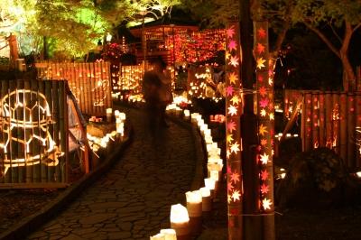 11月:清水竹灯り