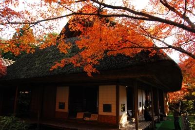 Nov:Kunenan Public Opening