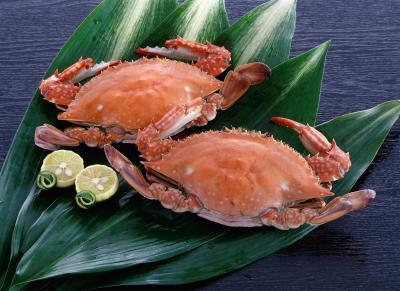 Takezaki Crabs
