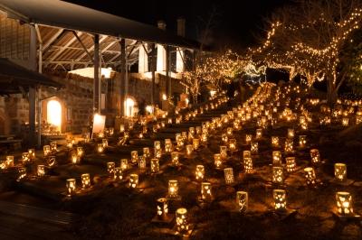 2月:TAKEO・世界一飛龍窯灯ろう祭り