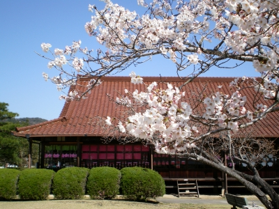 Koreyoshi Takatori, a coal mine millionaire from the Taku Area, built Seikei Park and donated it to the municipality. Cherry blossoms in spring and autumn leaves in fall decorate the park and attract many tourists. Kanoutei (public hall), which is designated as a tangible cultural property by the national government and two museums themed on the local history and culture are located in the park.