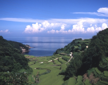 Terraced Rice Fields of Hamanoura