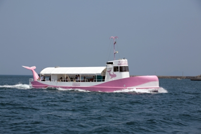 Marinepal Yobuko mainly operates two sightseeing boats; Zeela is a marine observatory boat which allows you to take in the underwater scenery with the fish swimming naturally on the current . Ikamaru is a sightseeing boat which cruises around Nanatsugama sea caves.