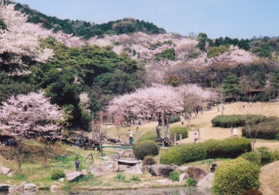 It is a popular park where people can enjoy cherry blossoms and other various ways to spend time. You can bring your own ingredients and charcoal for barbeque.(Reservation required)