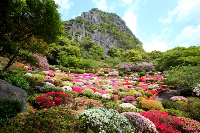 It is said that The 28th lord of Takeo Clan, Shigeyoshi Nabeshima, created this garden spending about 3 years in order to complete his cottage. 2,000 of cherry trees and 200,000 of azalea in spring and colorful autumn leaves in fall create the stunning scenery with a cliff of Mt. Mifuneyama in the background, that reminds you of landscape painting.